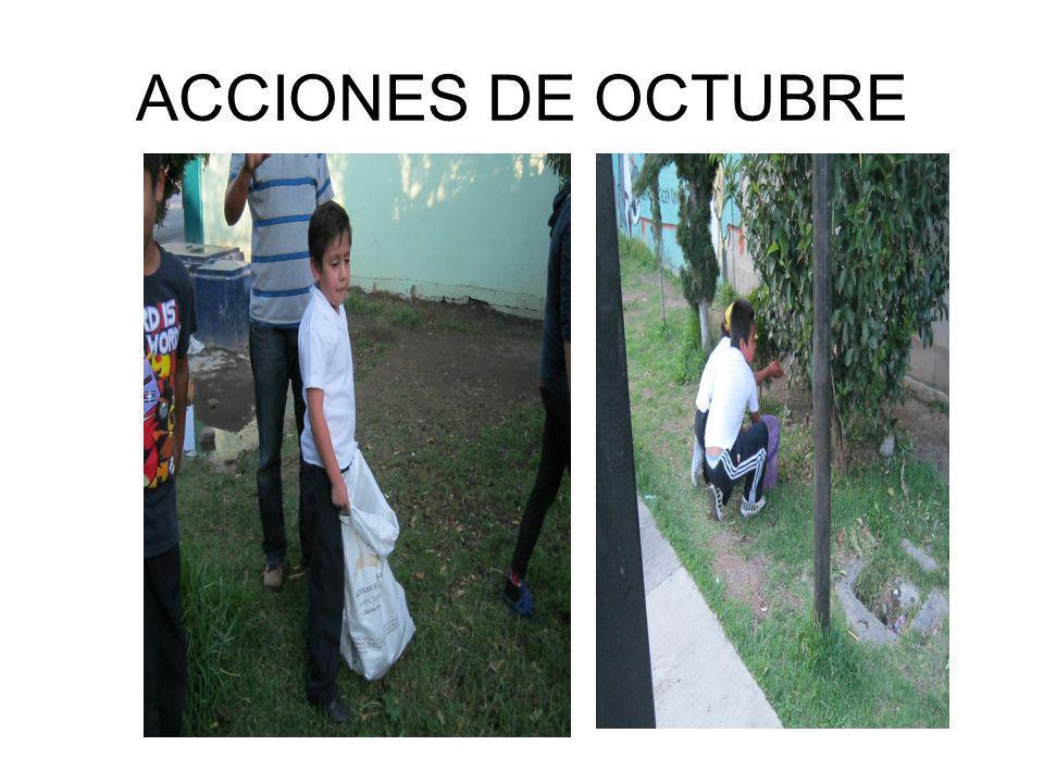 ACCIONES DE OCTUBRE