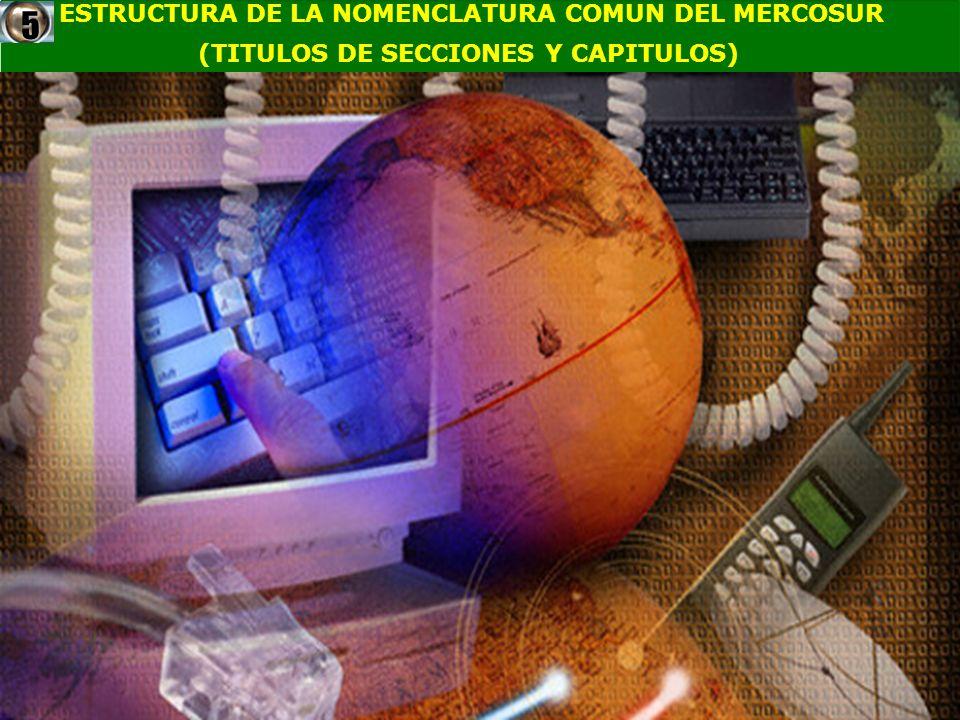 5 ESTRUCTURA DE LA NOMENCLATURA COMUN DEL MERCOSUR