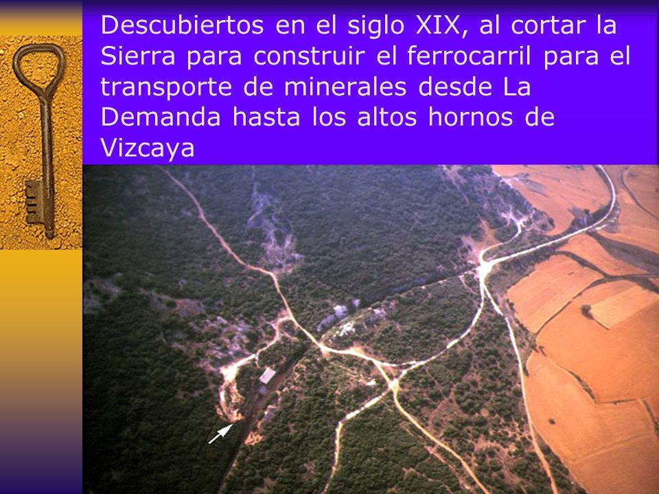 Descubiertos en el siglo XIX, al cortar la Sierra para construir el ferrocarril para el transporte de minerales desde La Demanda hasta los altos hornos de Vizcaya