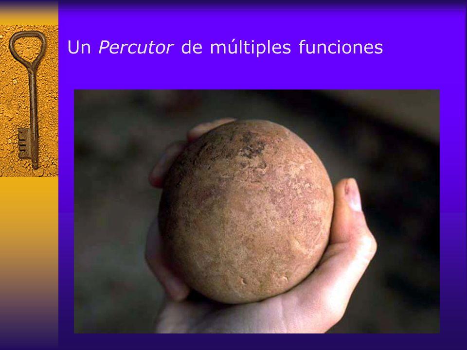 Un Percutor de múltiples funciones
