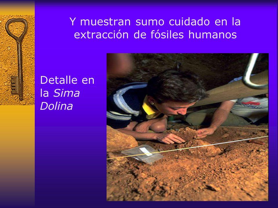 Y muestran sumo cuidado en la extracción de fósiles humanos