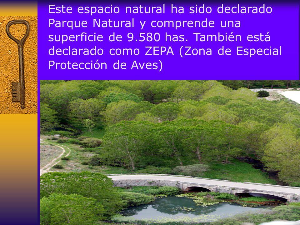 Este espacio natural ha sido declarado Parque Natural y comprende una superficie de 9.580 has.