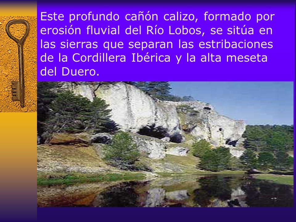 Este profundo cañón calizo, formado por erosión fluvial del Río Lobos, se sitúa en las sierras que separan las estribaciones de la Cordillera Ibérica y la alta meseta del Duero.