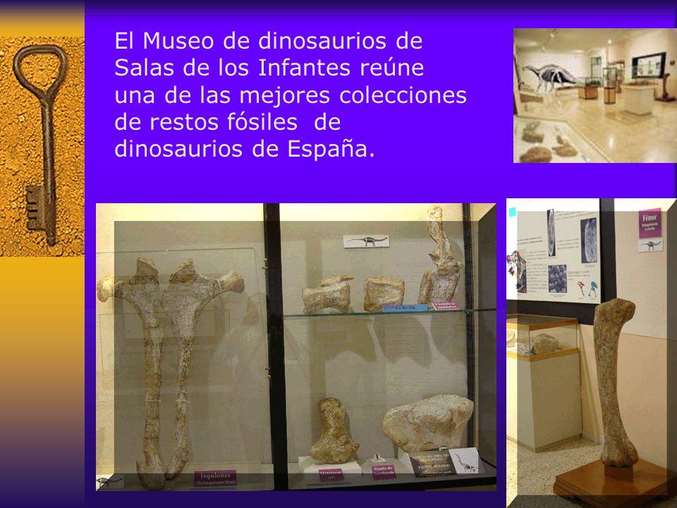El Museo de dinosaurios de Salas de los Infantes reúne una de las mejores colecciones de restos fósiles de dinosaurios de España.