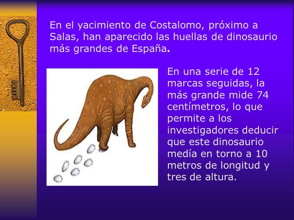 En el yacimiento de Costalomo, próximo a Salas, han aparecido las huellas de dinosaurio más grandes de España.