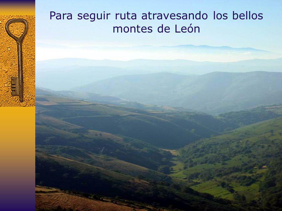 Para seguir ruta atravesando los bellos montes de León