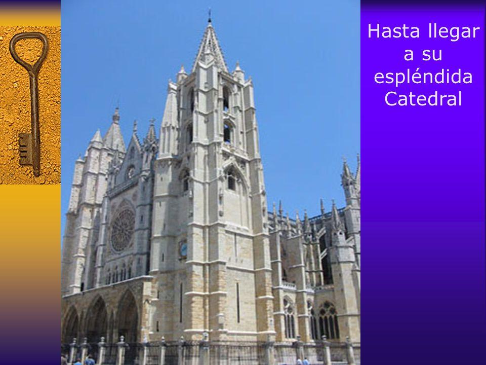 Hasta llegar a su espléndida Catedral