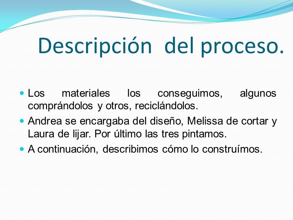 Descripción del proceso.