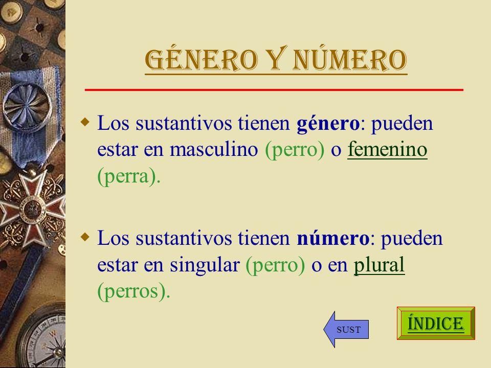 Género y número Los sustantivos tienen género: pueden estar en masculino (perro) o femenino (perra).