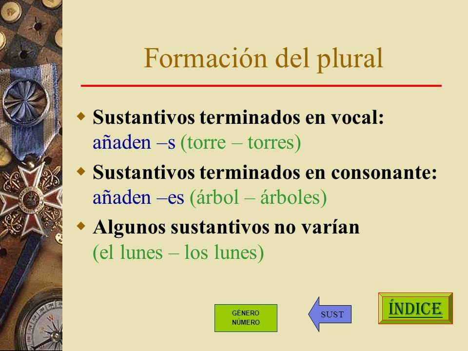 Formación del plural Sustantivos terminados en vocal: añaden –s (torre – torres)
