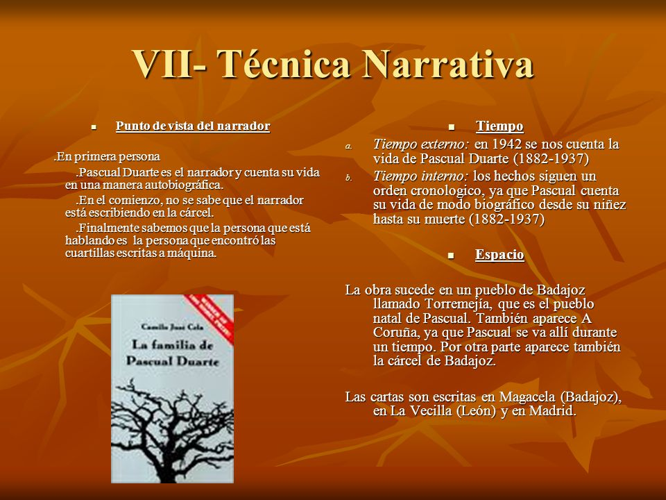 VII- Técnica Narrativa