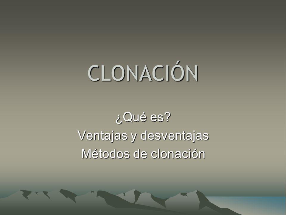 ¿Qué es Ventajas y desventajas Métodos de clonación
