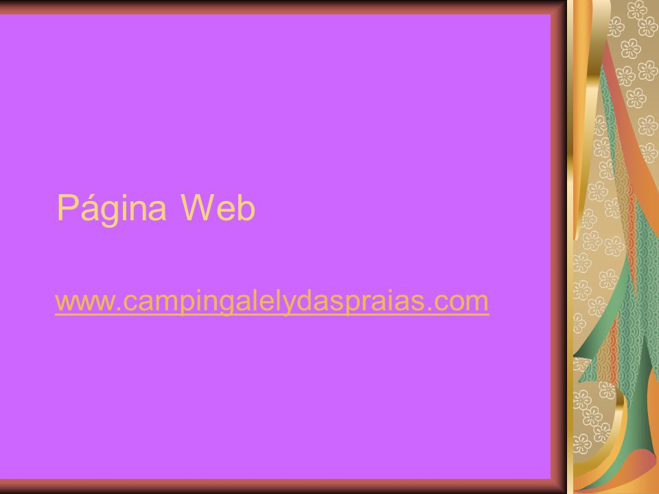 Página Web www.campingalelydaspraias.com