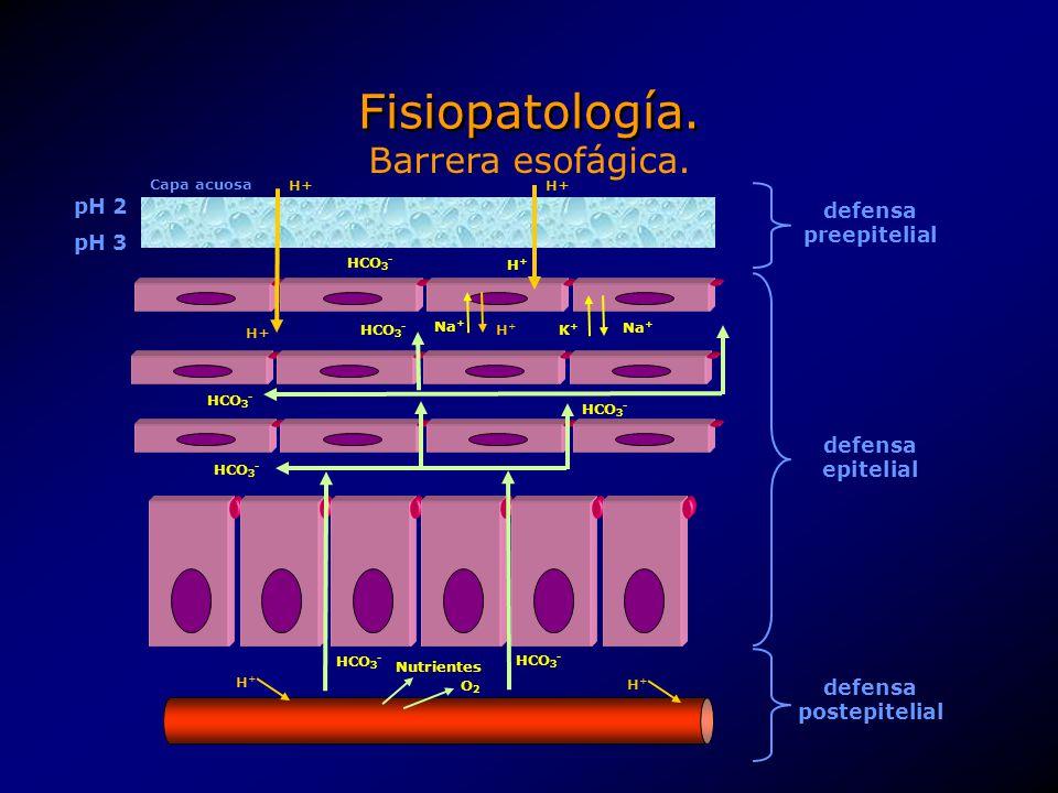 Fisiopatología. Barrera esofágica. pH 2 defensa preepitelial pH 3