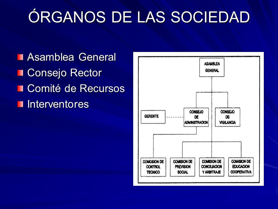 ÓRGANOS DE LAS SOCIEDAD