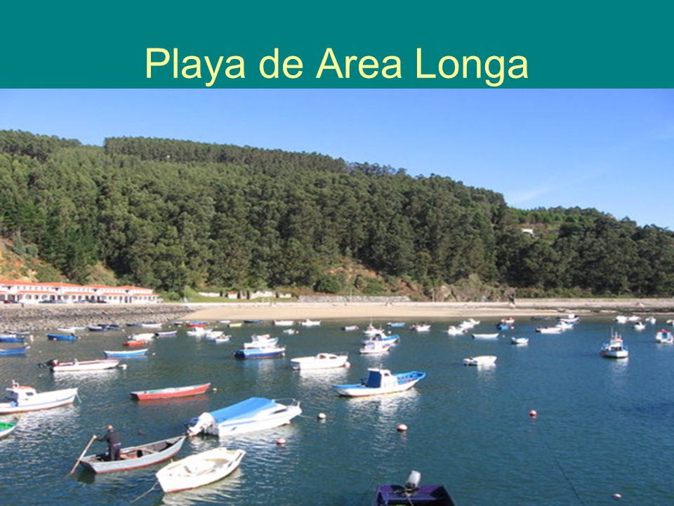 Playa de Area Longa
