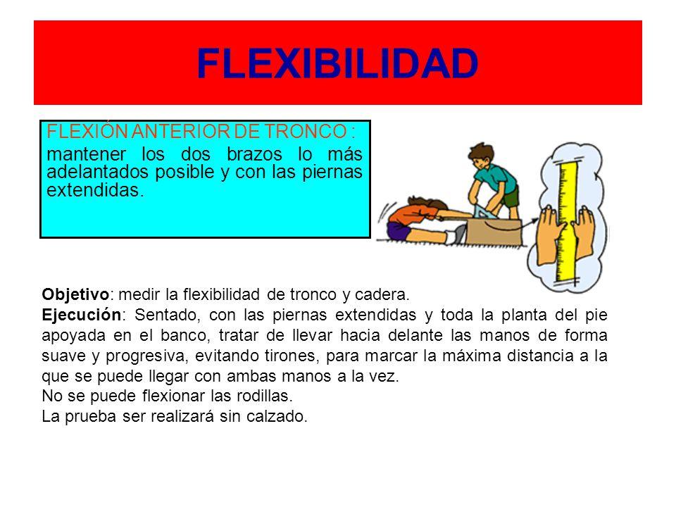 FLEXIBILIDAD FLEXIÓN ANTERIOR DE TRONCO :