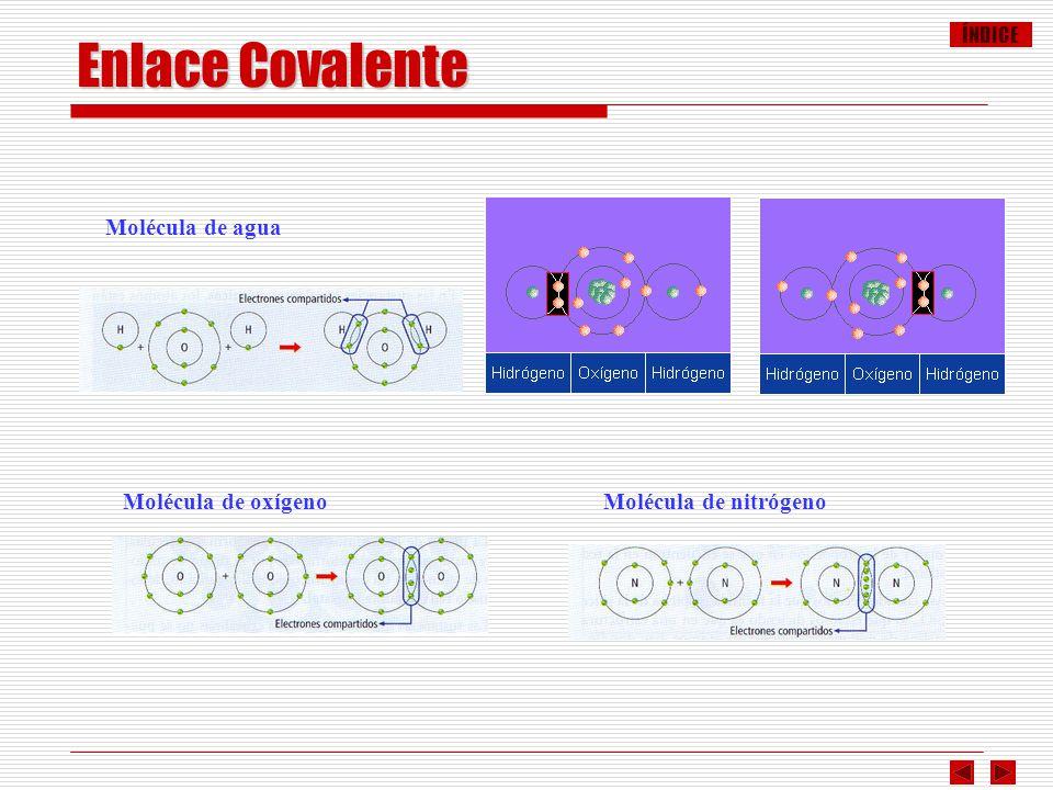 Enlace Covalente Molécula de agua Molécula de oxígeno