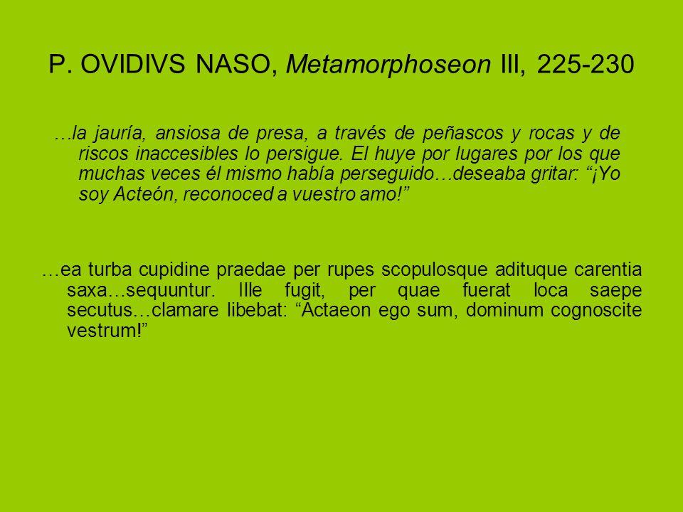 P. OVIDIVS NASO, Metamorphoseon III, 225-230