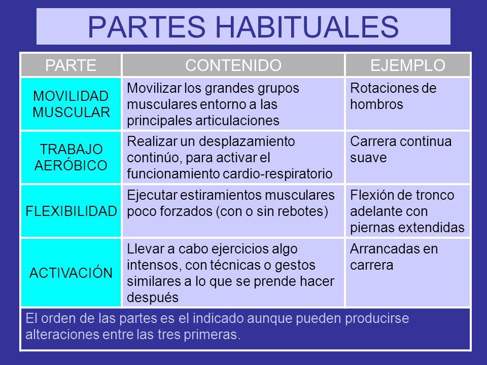 PARTES HABITUALES PARTE CONTENIDO EJEMPLO MOVILIDAD MUSCULAR