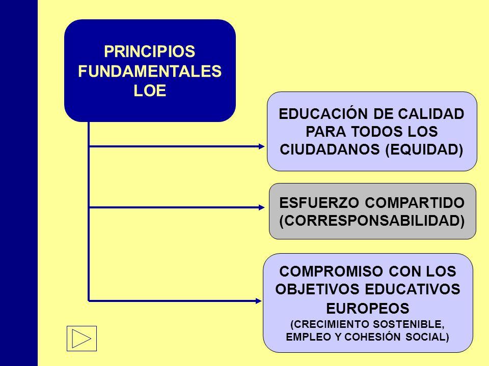 PRINCIPIOS FUNDAMENTALES LOE