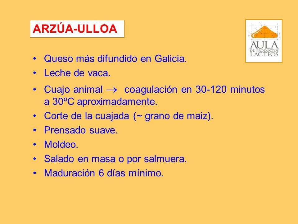 ARZÚA-ULLOA Queso más difundido en Galicia. Leche de vaca.