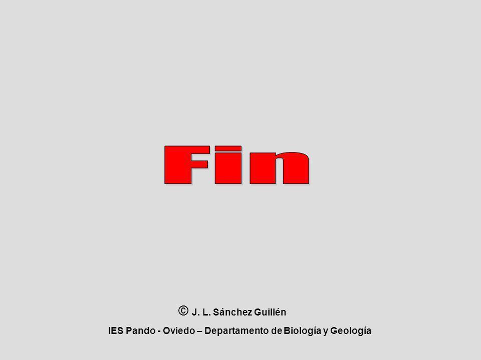 IES Pando - Oviedo – Departamento de Biología y Geología