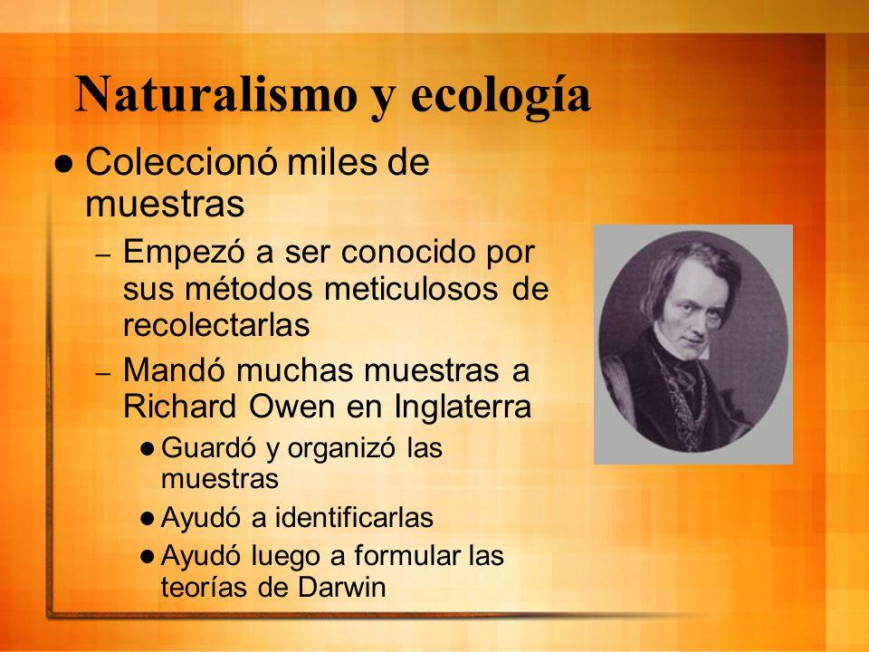 Naturalismo y ecología