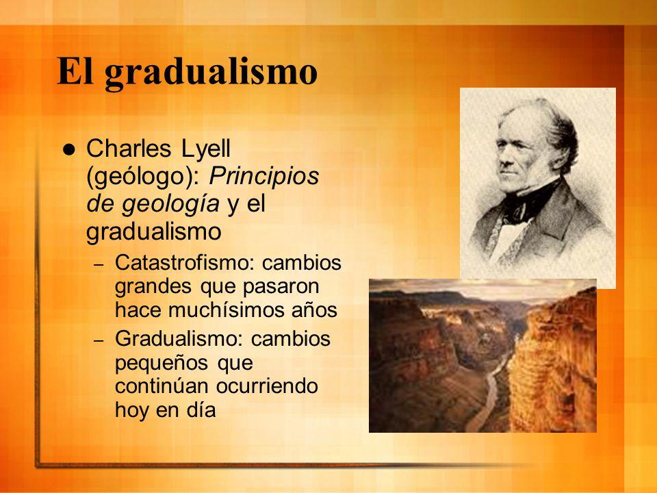 El gradualismo Charles Lyell (geólogo): Principios de geología y el gradualismo.