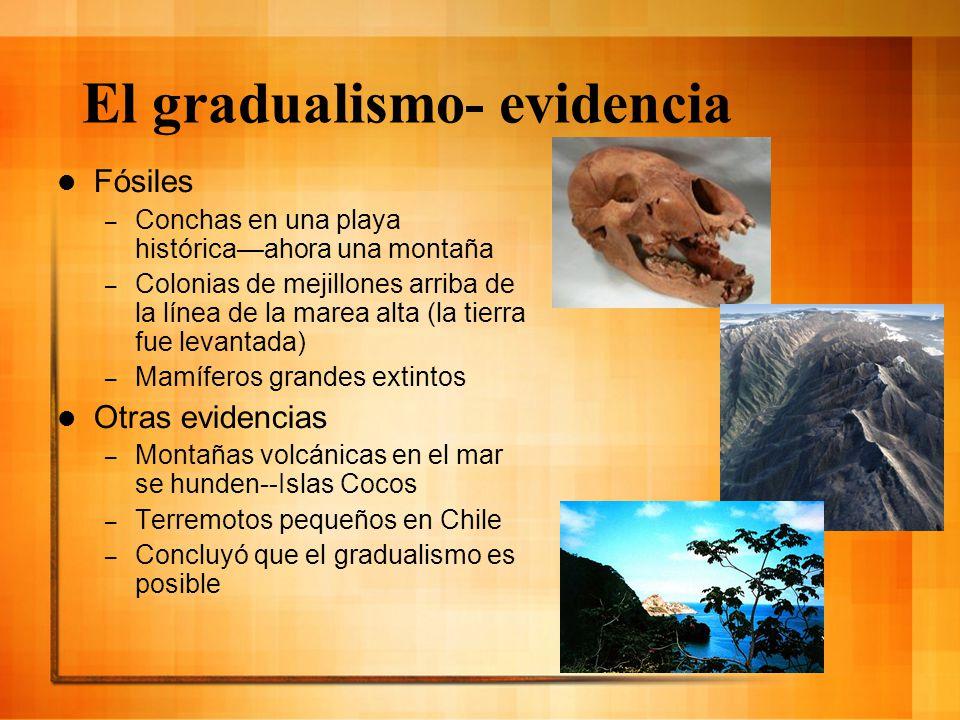 El gradualismo- evidencia