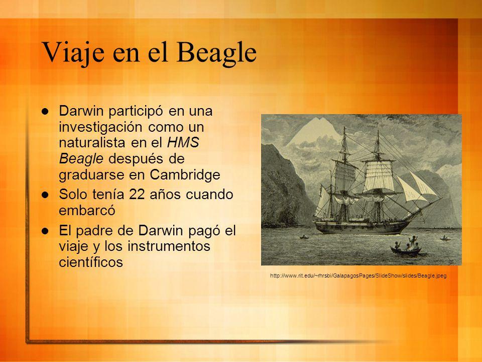 Viaje en el Beagle Darwin participó en una investigación como un naturalista en el HMS Beagle después de graduarse en Cambridge.