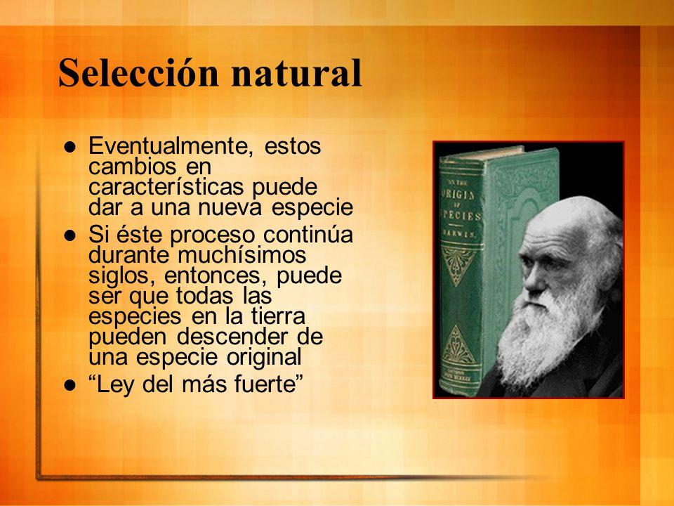 Selección natural Eventualmente, estos cambios en características puede dar a una nueva especie.