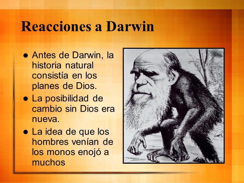 Reacciones a Darwin Antes de Darwin, la historia natural consistía en los planes de Dios. La posibilidad de cambio sin Dios era nueva.