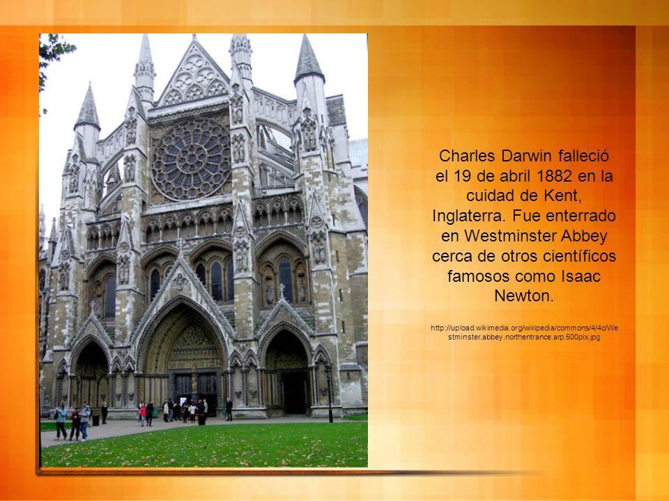 Charles Darwin falleció el 19 de abril 1882 en la cuidad de Kent, Inglaterra. Fue enterrado en Westminster Abbey cerca de otros científicos famosos como Isaac Newton.