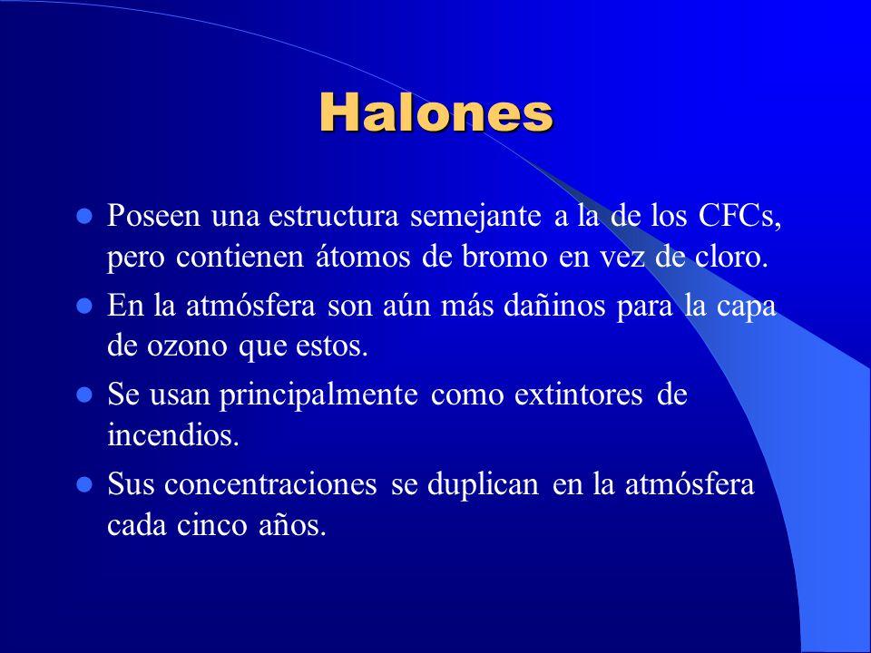 Halones Poseen una estructura semejante a la de los CFCs, pero contienen átomos de bromo en vez de cloro.