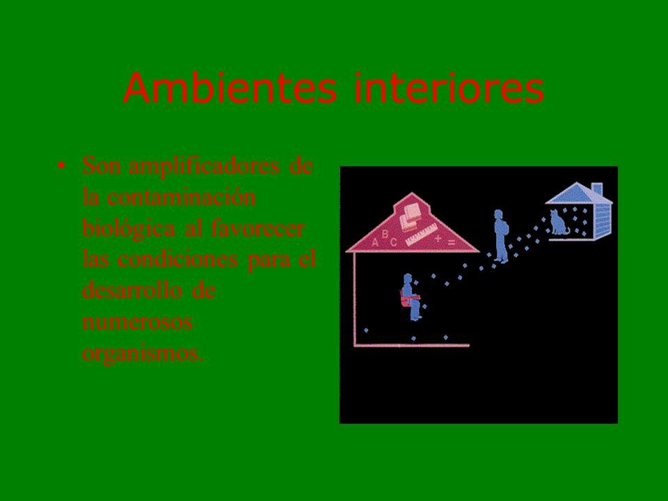 Ambientes interiores Son amplificadores de la contaminación biológica al favorecer las condiciones para el desarrollo de numerosos organismos.