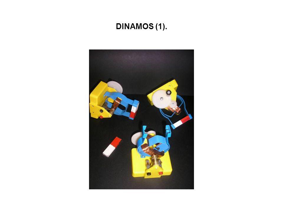 DINAMOS (1).