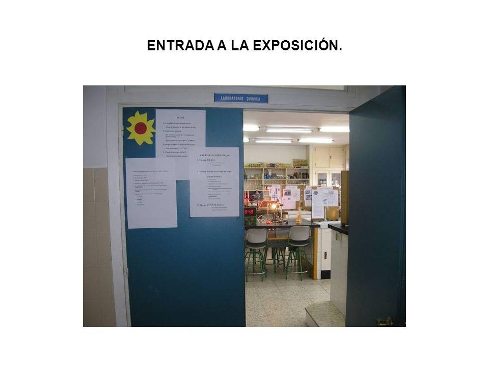 ENTRADA A LA EXPOSICIÓN.