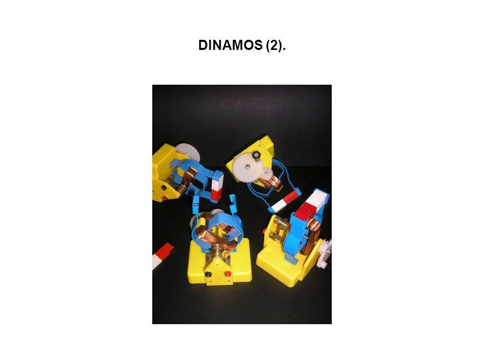DINAMOS (2).