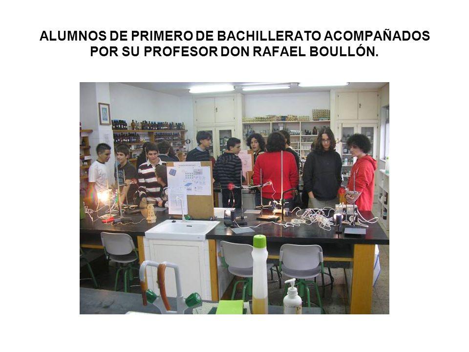 ALUMNOS DE PRIMERO DE BACHILLERATO ACOMPAÑADOS POR SU PROFESOR DON RAFAEL BOULLÓN.