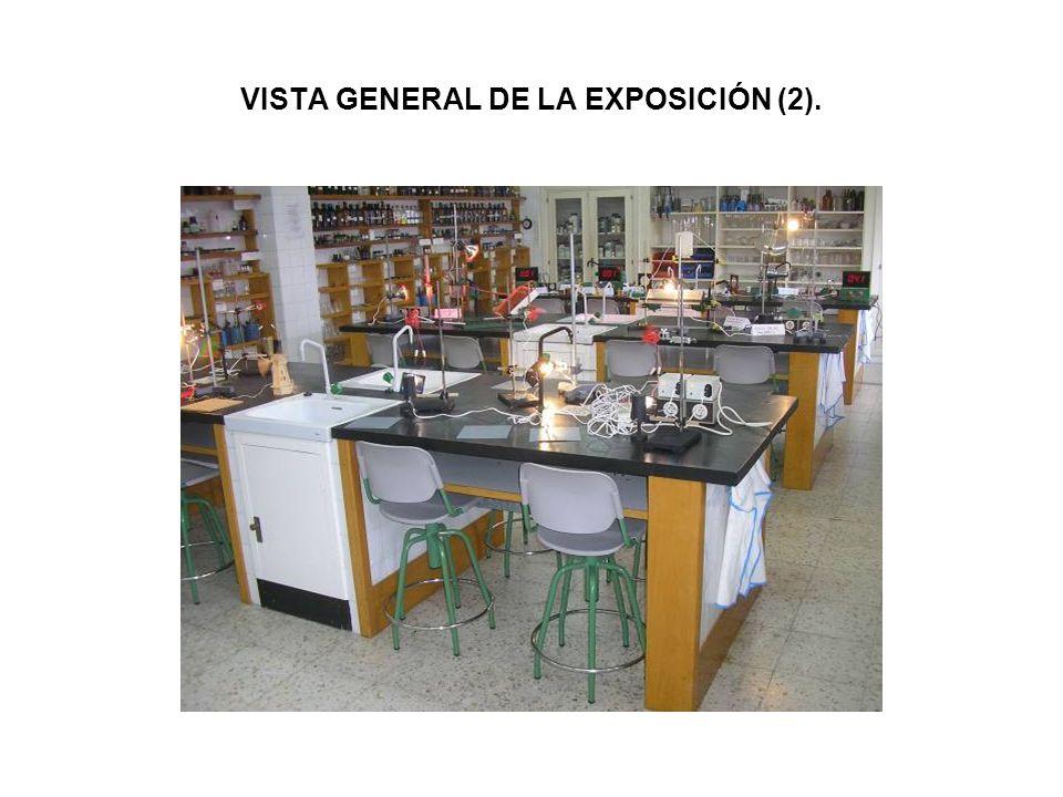 VISTA GENERAL DE LA EXPOSICIÓN (2).