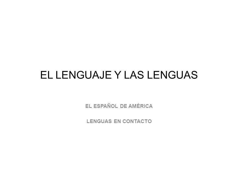 EL LENGUAJE Y LAS LENGUAS