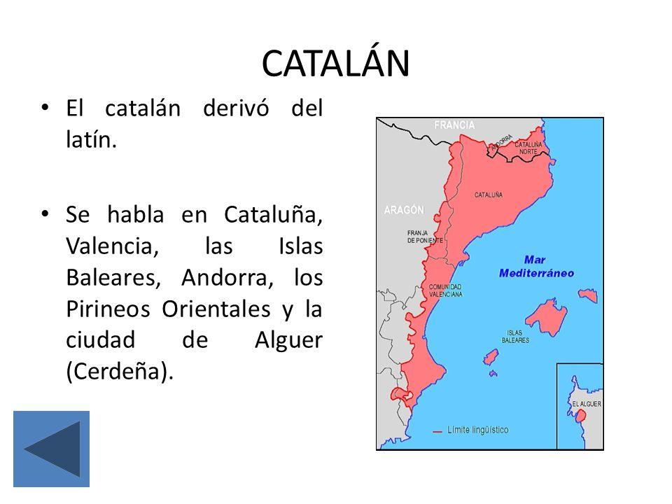 CATALÁN El catalán derivó del latín.
