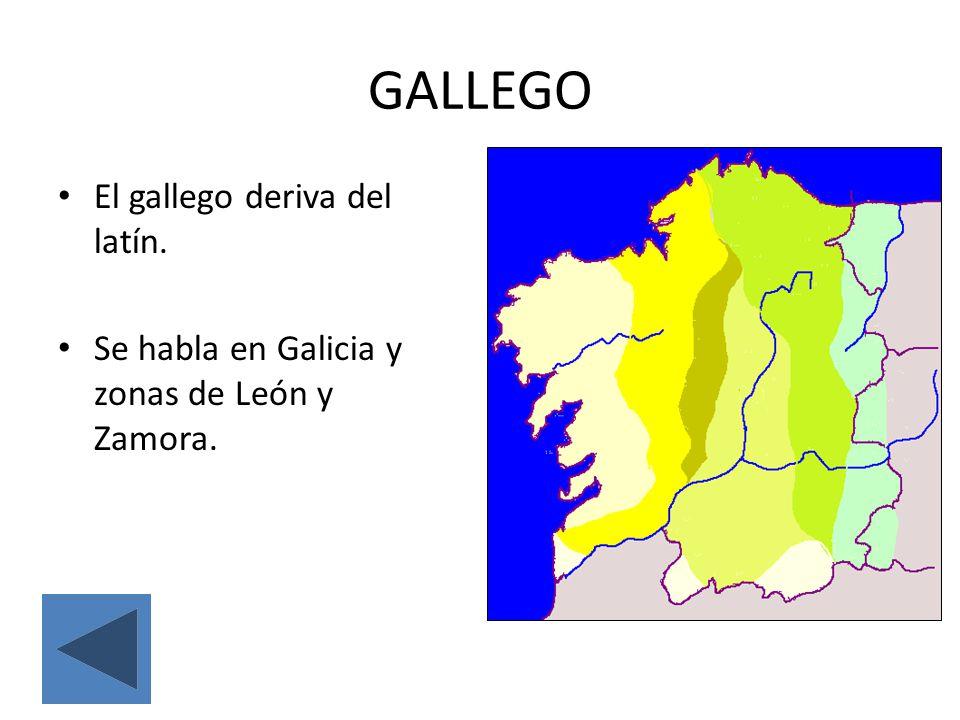 GALLEGO El gallego deriva del latín.