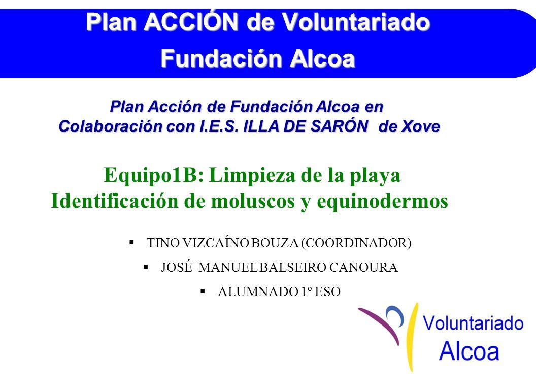 Plan ACCIÓN de Voluntariado Fundación Alcoa