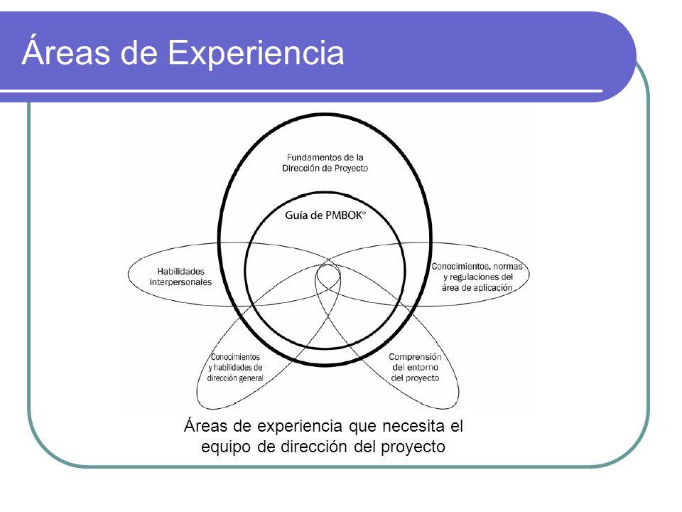 Áreas de experiencia que necesita el equipo de dirección del proyecto