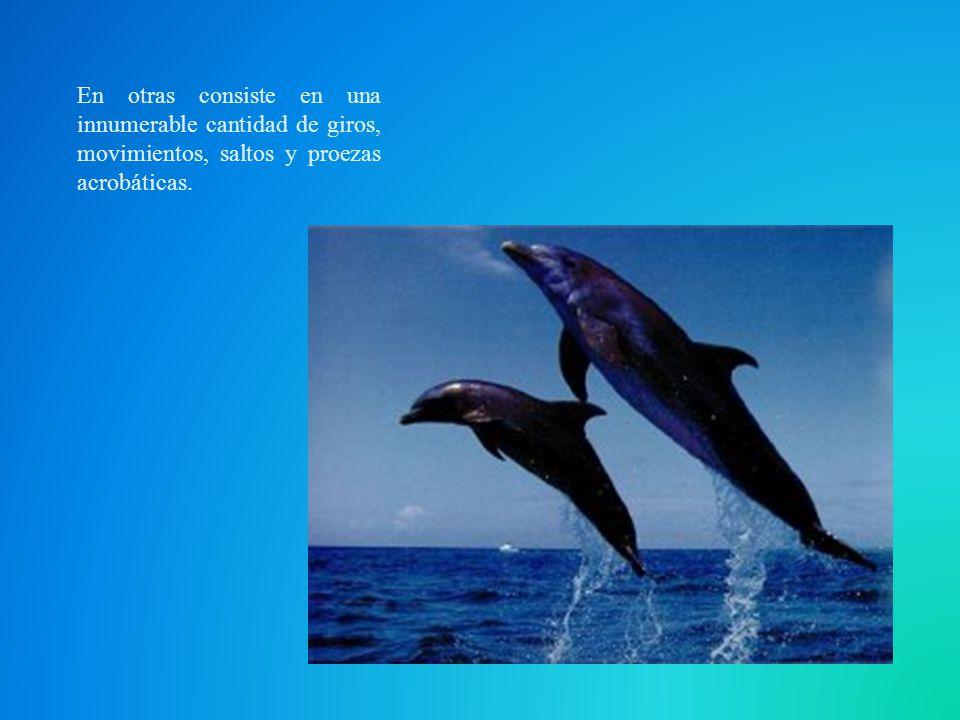 En otras consiste en una innumerable cantidad de giros, movimientos, saltos y proezas acrobáticas.