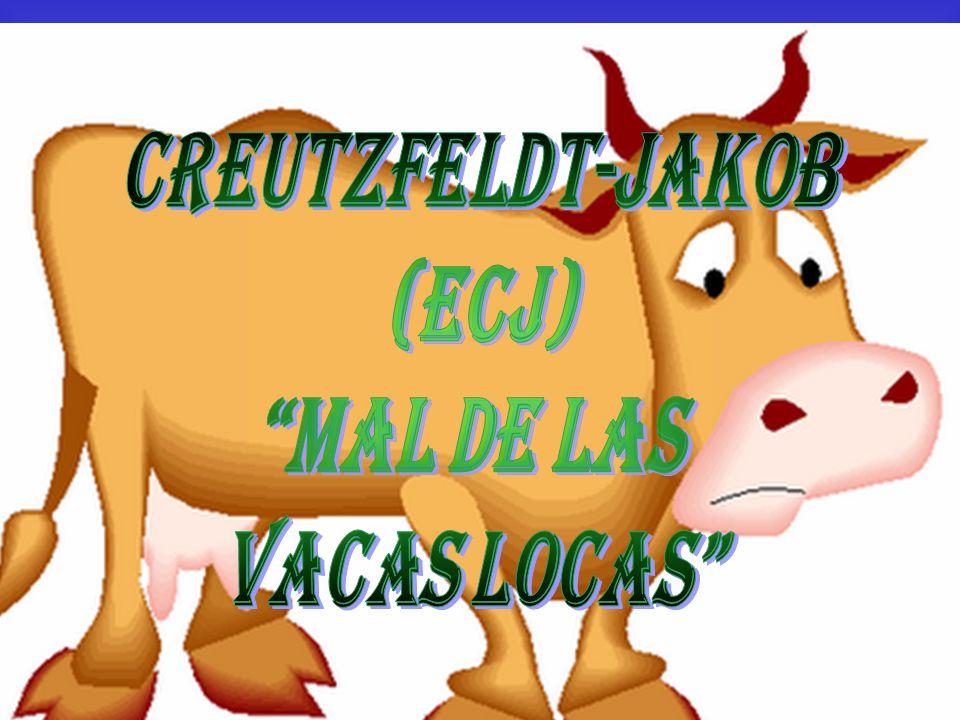 CREUTZFELDT-JAKOB (ECJ) Mal de las vacas locas