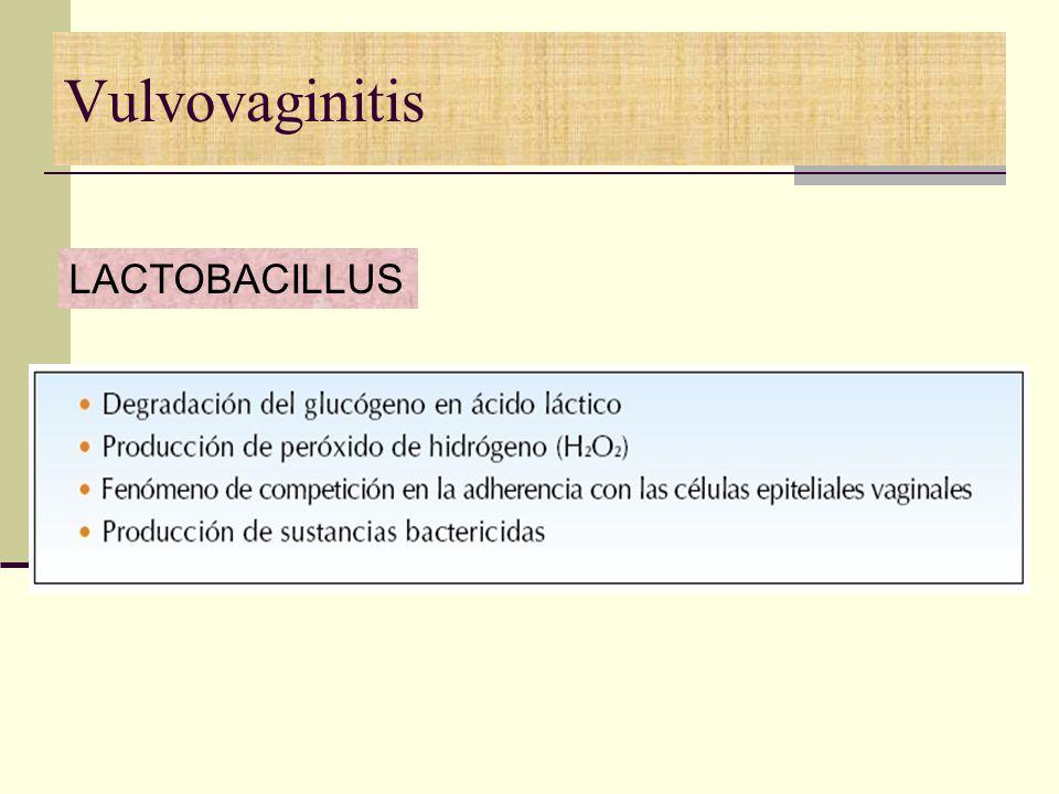 Vulvovaginitis LACTOBACILLUS