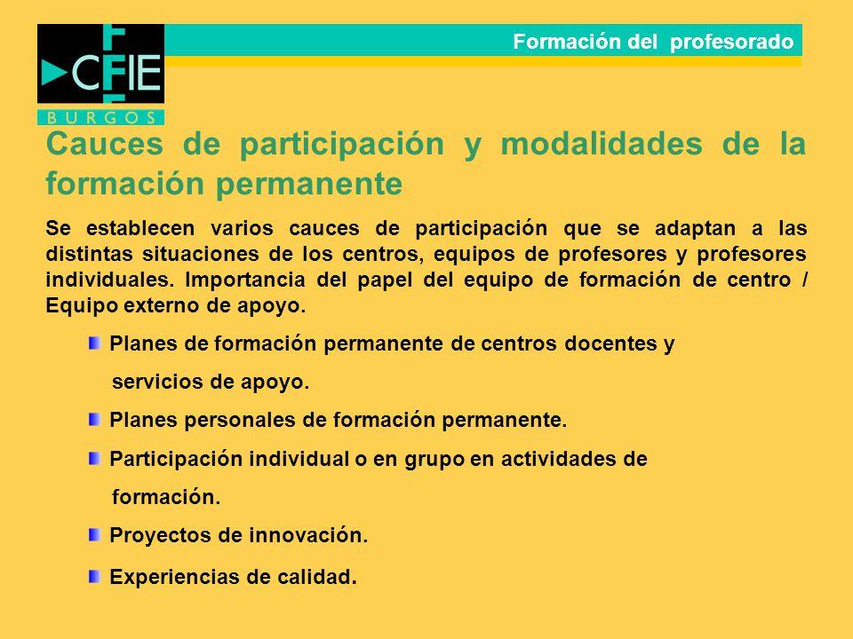 Cauces de participación y modalidades de la formación permanente